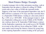short futures hedge example