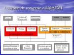 procesele de conversie a biomasei