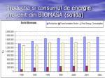 productia si consumul de energie provenit din biomasa solida