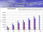 productia si consumul de gaz obtinut din biomasa