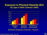 exposure to physical hazards eu by type of work contract 1995
