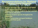 recommendations for wetland enhancement projects