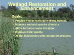 wetland restoration and enhancement