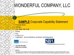 wonderful company llc