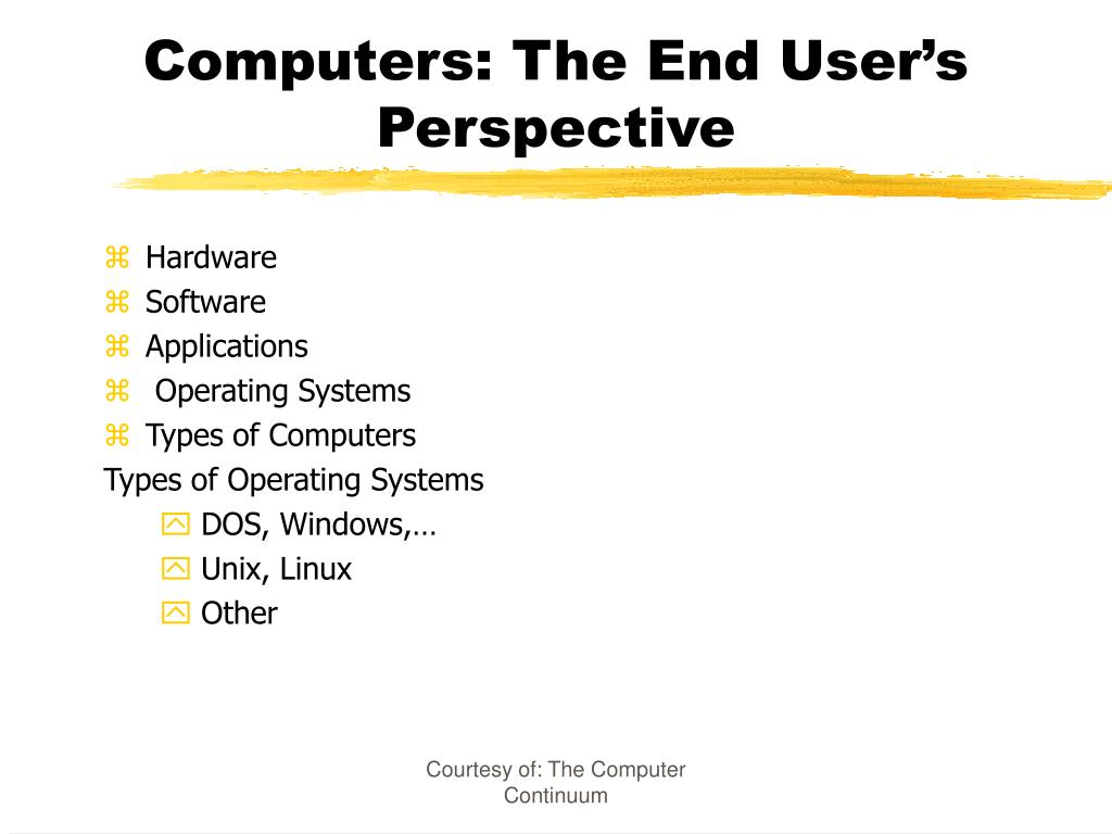 computers the end user s perspective l.