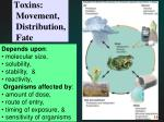toxins movement distribution fate