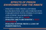 effects of prison environment and the inmate