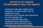 effects of prison environment and the inmate17
