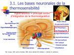 3 1 les bases neuronales de la thermosensibilit49