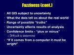 fuzziness cont