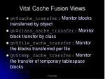 vital cache fusion views