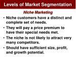 levels of market segmentation10