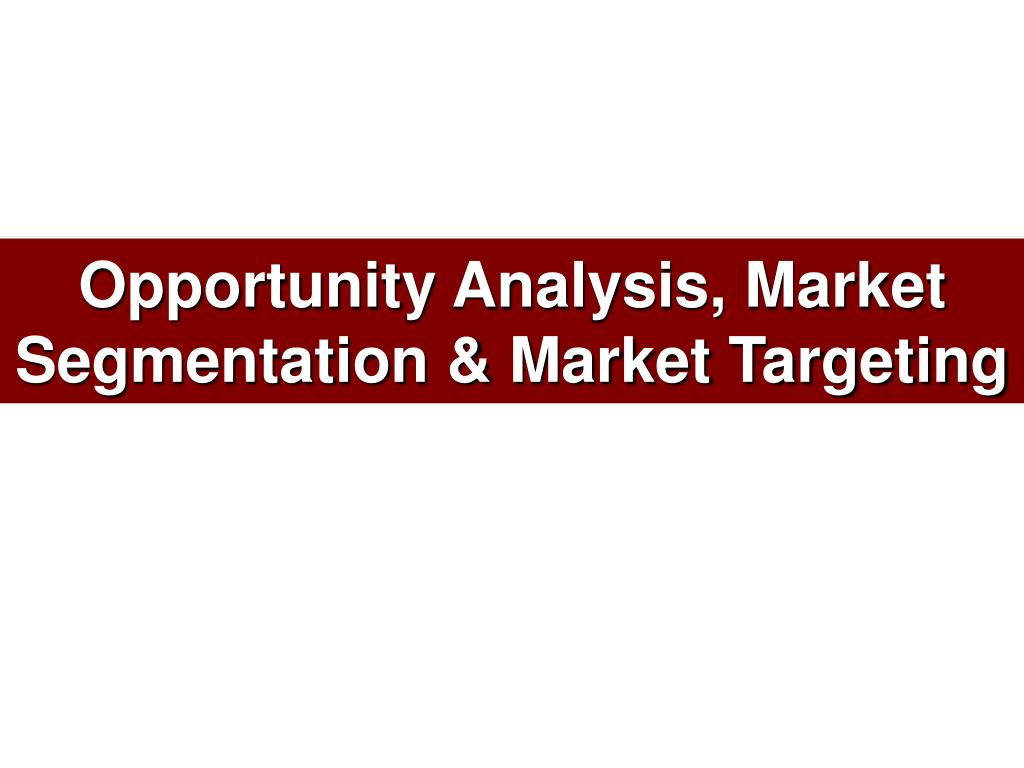opportunity analysis market segmentation market targeting l.