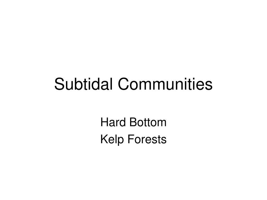 subtidal communities l.