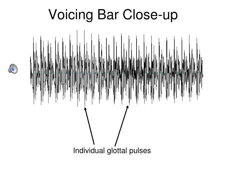 Voicing Bar Close-up