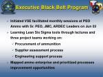 executive black belt program