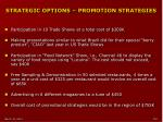 strategic options promotion strategies