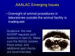 aaalac emerging issues47