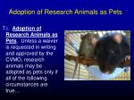 adoption of research animals as pets