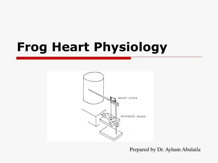 frog heart physiology n.