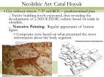 neolithic art catal hoyuk