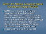 what is the national companion animal surveillance program ncasp