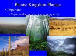 plants kingdom plantae38