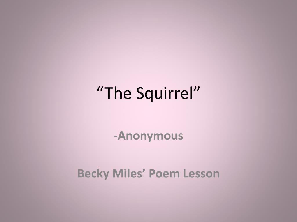 the squirrel l.