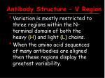 antibody structure v region