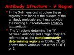 antibody structure v region15