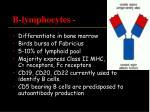 b lymphocytes