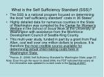 what is the self sufficiency standard sss