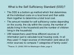 what is the self sufficiency standard sss58