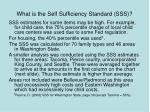 what is the self sufficiency standard sss59