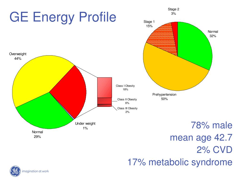 GE Energy Profile