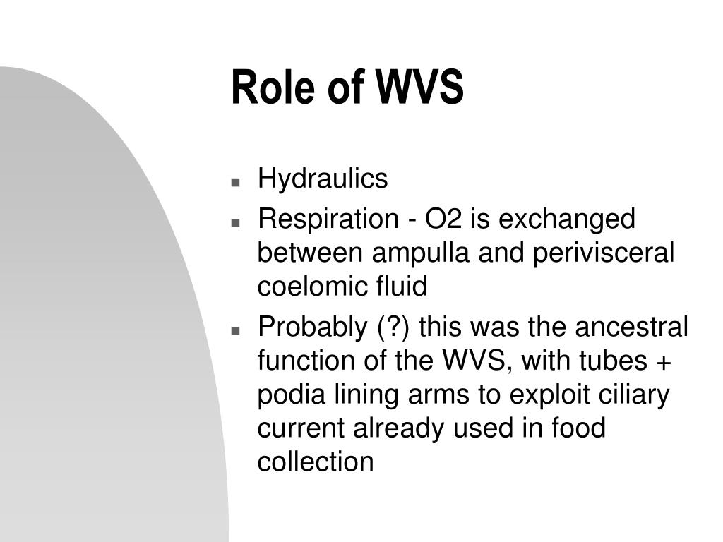 Role of WVS