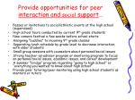 provide opportunities for peer interaction and social support