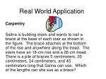 real world application110