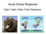 acute stress response