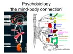 psychobiology the mind body connection