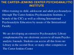 the carter jenkins center psychoanalytic institute19