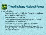 the allegheny national forest