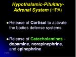 hypothalamic pituitary adrenal system hpa
