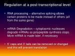 regulation at a post transcriptional level