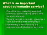 what is so important about community service