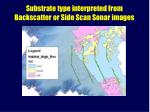 substrate type interpreted from backscatter or side scan sonar images
