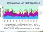 breakdown of bgp updates