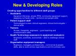 new developing roles