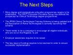 the next steps28