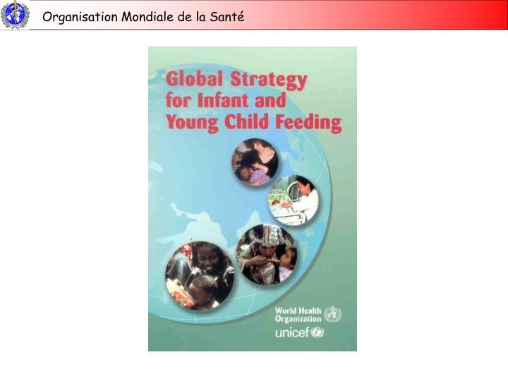 L ments cl s de la strat gie mondiale pour lalimentation du nourrisson et du jeune enfant